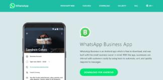 whatsapp business app download