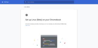 chrome-os-69-linux-1-chromebook setup